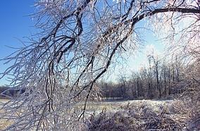 Pronostican un invierno no muy frío y con pocas lluvias