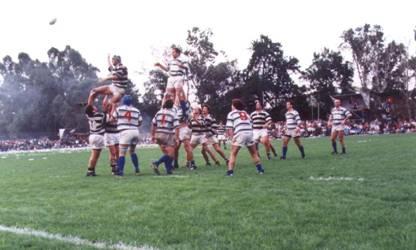 Copa de Rugby San Isidro Labrador