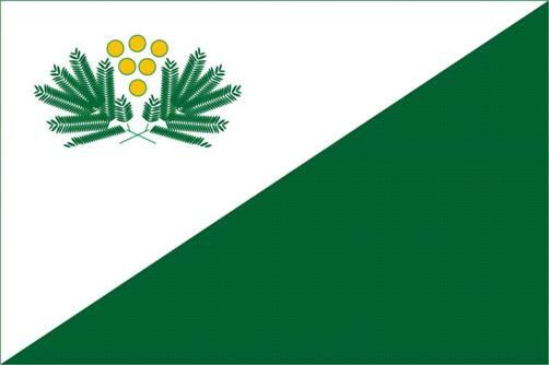 Imagen de la bandera de San Isidro que será oficialmente Presentada el próximo lunes 14 por el intendente Posse