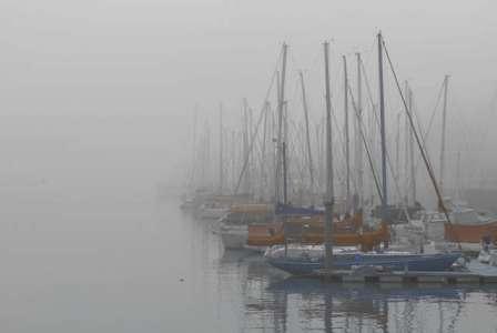 La neblina cubre la zona norte y vino para quedarse