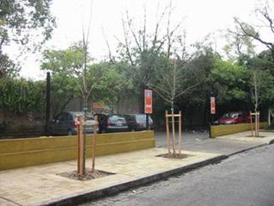 La tarea de forestación y reforestación comprende los distintos barrios sanisidrenses