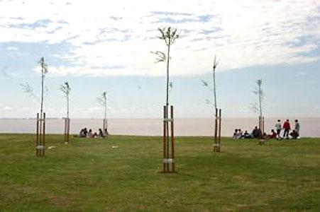 Plantaron más de 10.000 árboles en San Isidro.