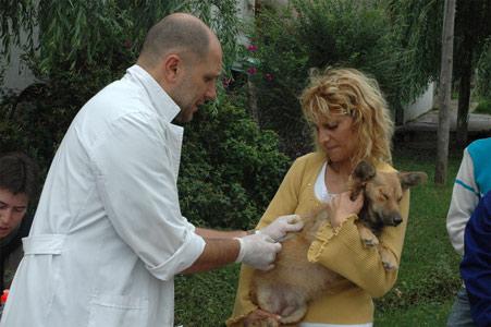 Operativo de zoonosis en Rincón de Milberg