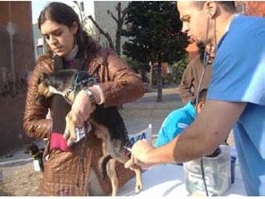 Exitosa campaña por las mascotas en San Isidro