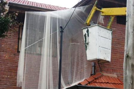 Medidas preventivas por aparición de murciélagos en Don Torcuato