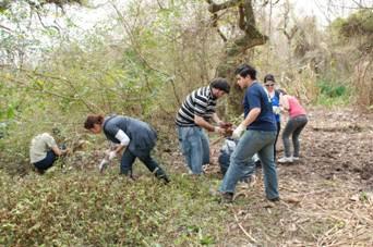 Limpiaron la reserva ecológica municipal