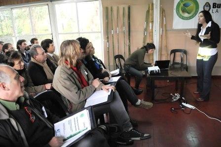 Promueven la cadena productiva del bambú en el Delta Bonaerense
