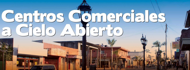 Disertación sobre Gerenciamiento de Centros Comerciales a cielo abierto en el Museo de la Reconquista