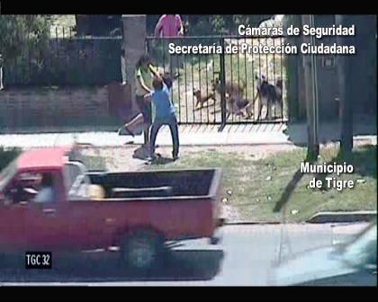 Las cámaras de seguridad de Tigre atraparon un mujer robando