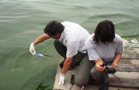 Gran mortandad de peces en el Delta del Paraná