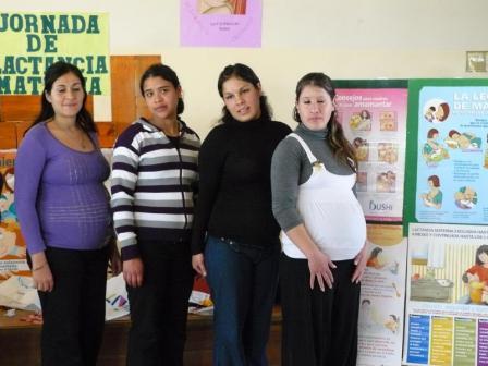 El control del embarazo como política contra la mortalidad infantil