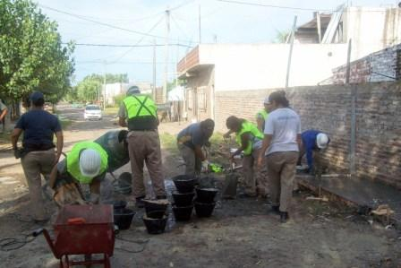 Trabajo conjunto entre el Municipio y las cooperativas de Ricardo Rojas y Troncos.