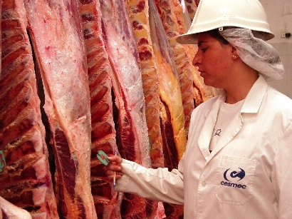 Comenzó a regir el acuerdo de ocho cortes de carne a precios rebajados