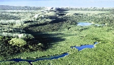 La UNESCO premió a la reserva de biósfera del Delta del Paraná