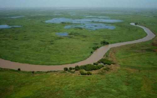 Lanzan una iniciativa sobre conservación y uso sustentable del Delta del Paraná