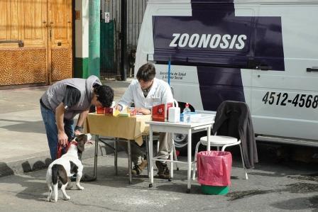 Más servicios en el Centro de Zoonosis