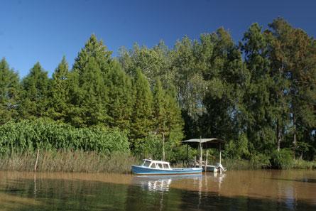 UNESCO otorgó becas para la conservación de la reserva de biosfera del Delta