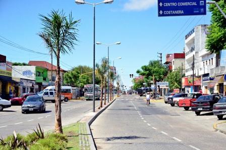 Avanza la colocación de palmeras en la Avenida Avellaneda de San Fernando