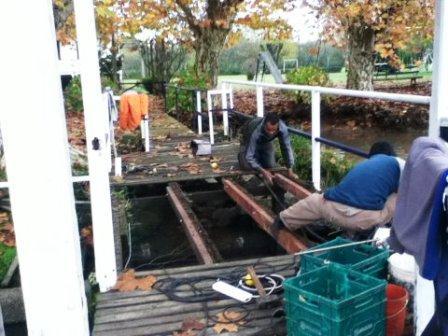 Realizan tareas de mantenimiento sobre el Río Sarmiento en el Delta de Tigre