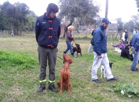 Ofrecen talleres gratuitos de adiestramiento canino en San Fernando