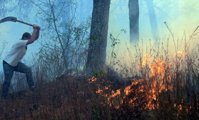 Seis provincias afectadas por incendios forestales generados por sequía, calor extremo y descuidos