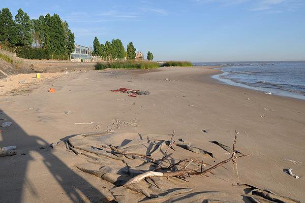 La bajante del río de la Plata afecta el volumen de agua en Capital y Gran Buenos Aires