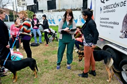 En un mes, Zoonosis de San Fernando y su Quirófano Móvil castraron 500 animales y vacunaron a otros 1000