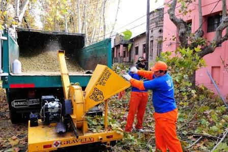 Campaña de concientización sobre higiene urbana en Tigre