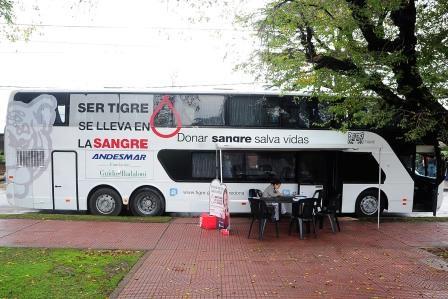 El móvil de sangre llega a Rincón de Milberg