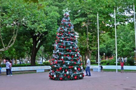 Arbol de navidad en la Plaza Mitre
