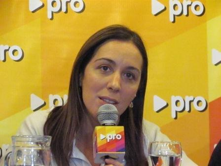 """Vidal aseguró que """"se dicen muchas mentiras"""" sobre lo que hará el Pro"""""""