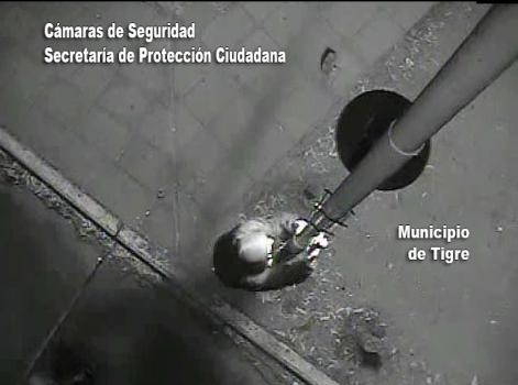 """Detienen a El """"Mono"""" de El Talar por atacar a una cámara de Tigre"""