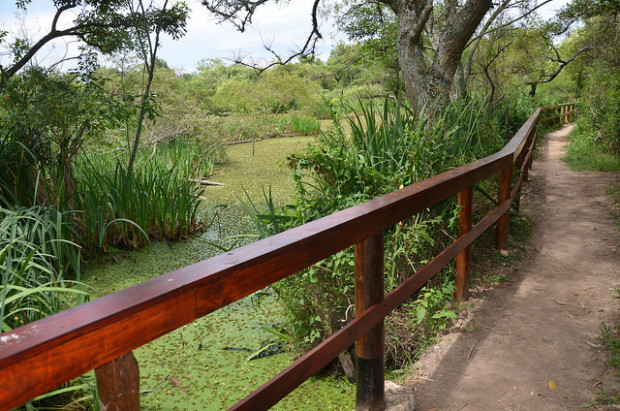San Isidro renueva el sendero de la laguna de Ribera Norte