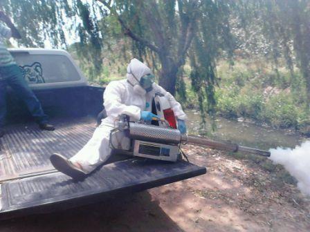 Intensifica los operativos de fumigación en Tigre