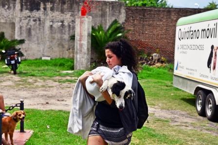 Zoonosis de San Fernando destacó su labor durante  2015