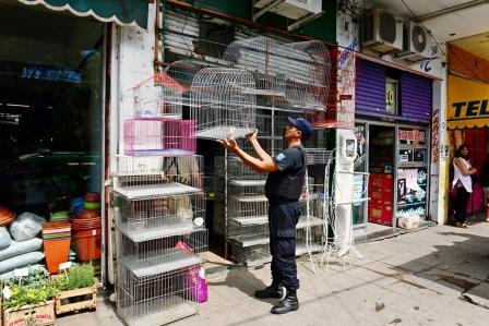 El Municipio de San Fernando clausuró local de venta de animales domésticos y ornamentales