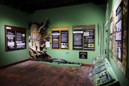 Nueva Sala de Historia Natural y Pueblos Originarios en el Museo de la Reconquista