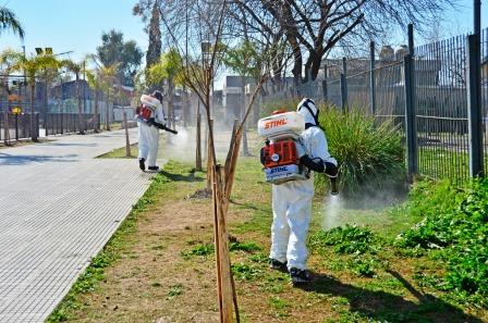 San Fernando inició trabajos de prevención contra el Dengue