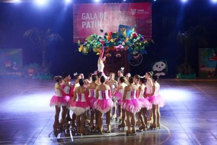 El Municipio de Tigre,  llevó a cabo la Gala de Patín de la Escuela Municipal en un marco de fiesta, show de sonido y colores. Más de 500 participantes, entre niños, adolescentes y adultos, desfilaron por la  pista del Microestadio de la UTN de General Pacheco, representando a los polideportivos del distrito que enseñan esta disciplina