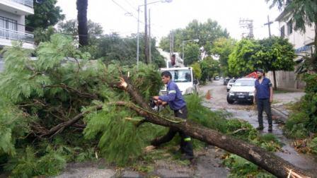 Frente al temporal, el Comité de Crisis de San Martín trabaja en distintos barrios