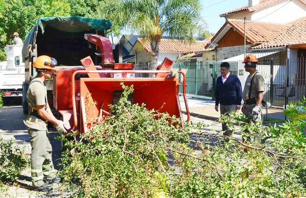 La Municipalidad de Vicente López inició el nuevo Plan de Poda para el 2017