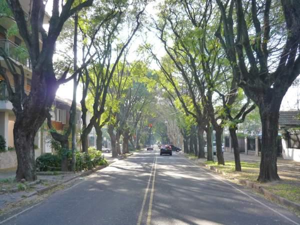 Corte en la calle Corrientes de Vicente López por obra de repavimentación