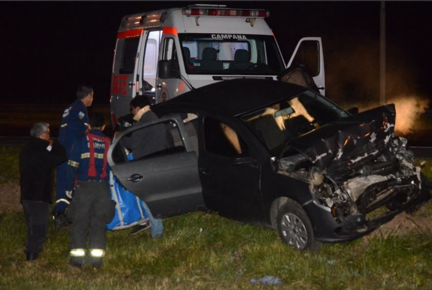 Varios heridos al chocar tres autos por causa de un caballo suelto sobre la autopista Panamericana