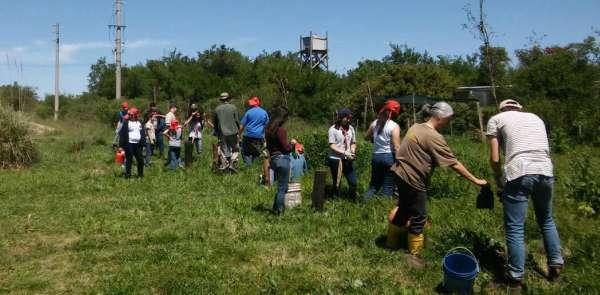 Se plantaron más de 800 árboles nativos en Pilar