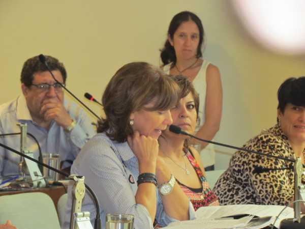El HCD de San Fernando aprobó por unanimidad la recuperación y ampliación de la Costanera Municipal - Alicia Aparicio