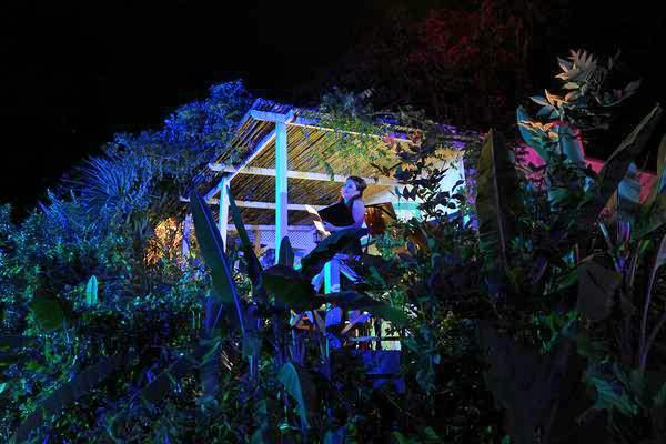 Bajo las estrellas del Delta, comenzaron las funciones del 5° Festival Opera Tigre.