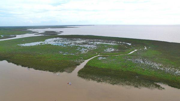 Surgieron nuevas islas frente a la costa San Isidro y serán reserva natural