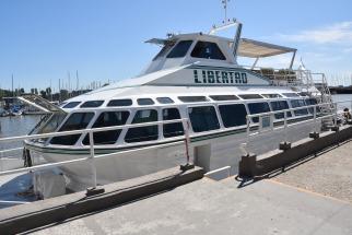 El joven cayó por causas que se investigan al agua desde el catamarán Libertad, una nave de 22,50 metros de largo que había sido alquilado para la fiesta y había zarpado del Puerto de Olivos.