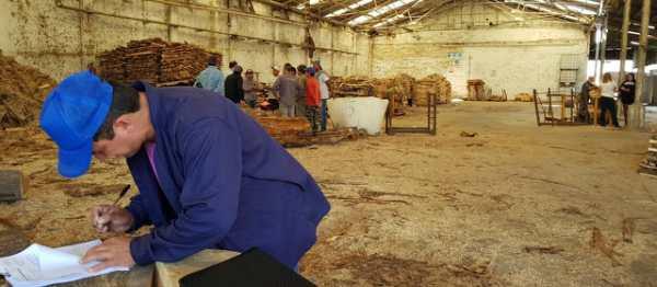 Detectan 97% de trabajo en negro en aserradero de Tigre