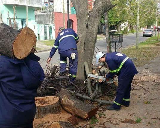Tigre amplía los trabajos en el barrio La Paloma